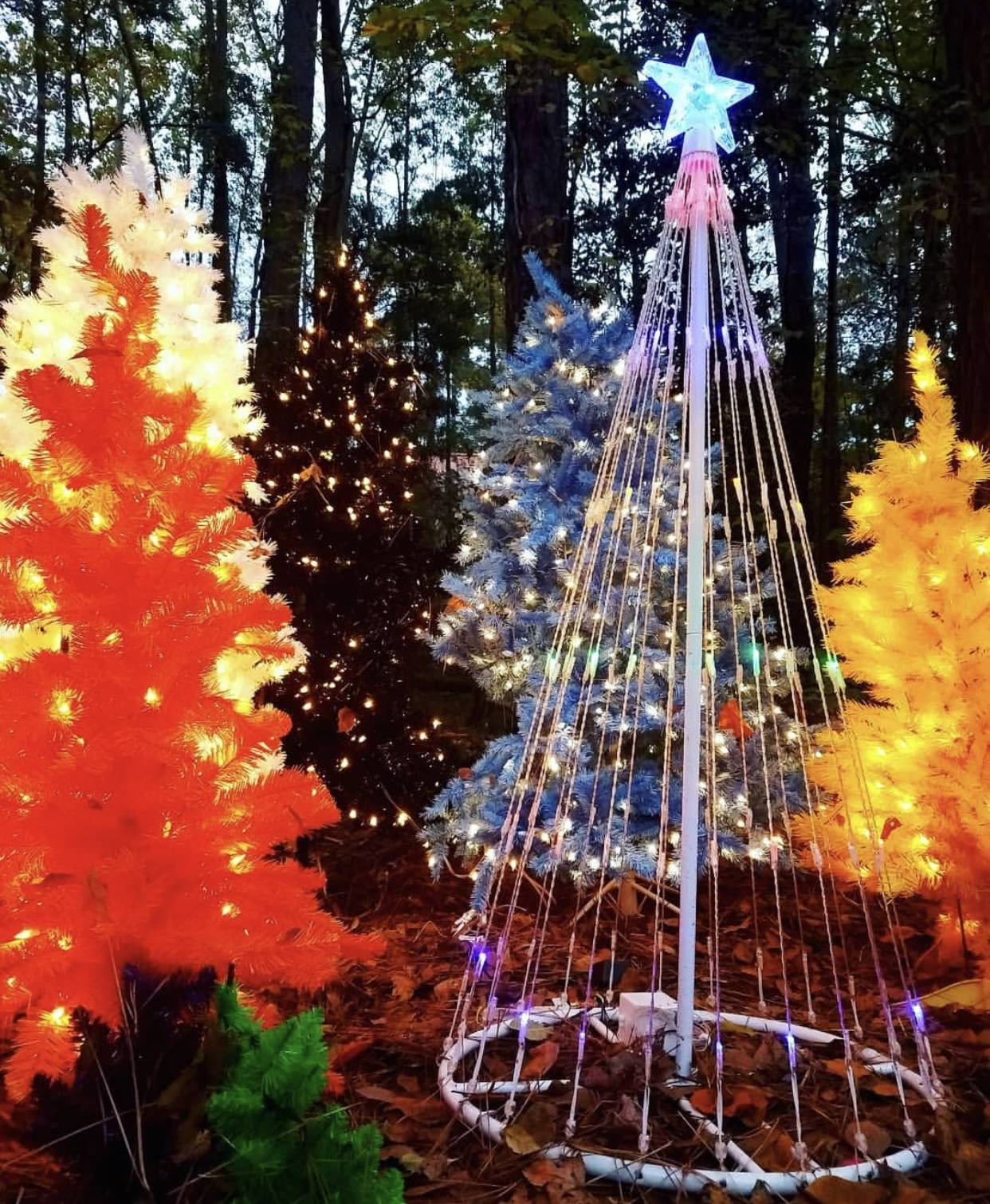 Columbia Christmas Tree: The Best Places To See Holiday Lights In Columbia
