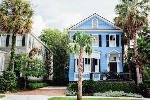 blue house with palmetto